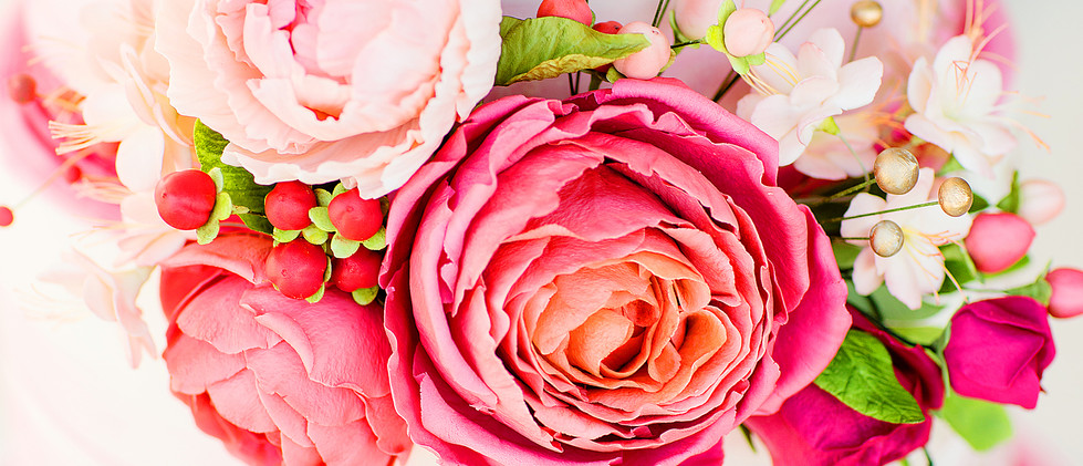 Late Summer Rose