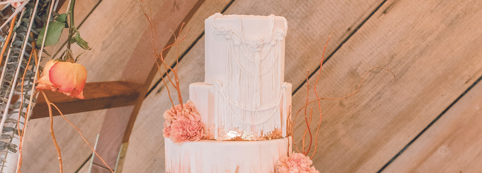 Terra Cotta Wedding Cake