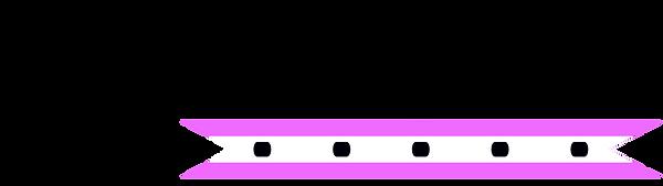 CBH Logo Cropped