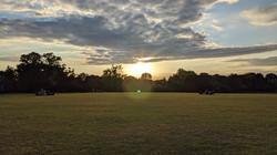 Sunset on the Heath