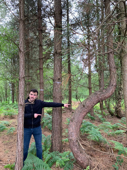 Ryan and the bendy tree