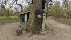 Pooh's House