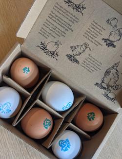 Cacklebean Eggs White & Brown