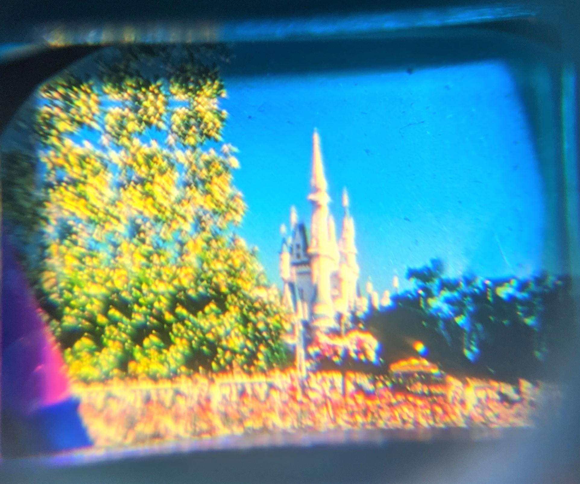 Viewfinder Magic Kingdom