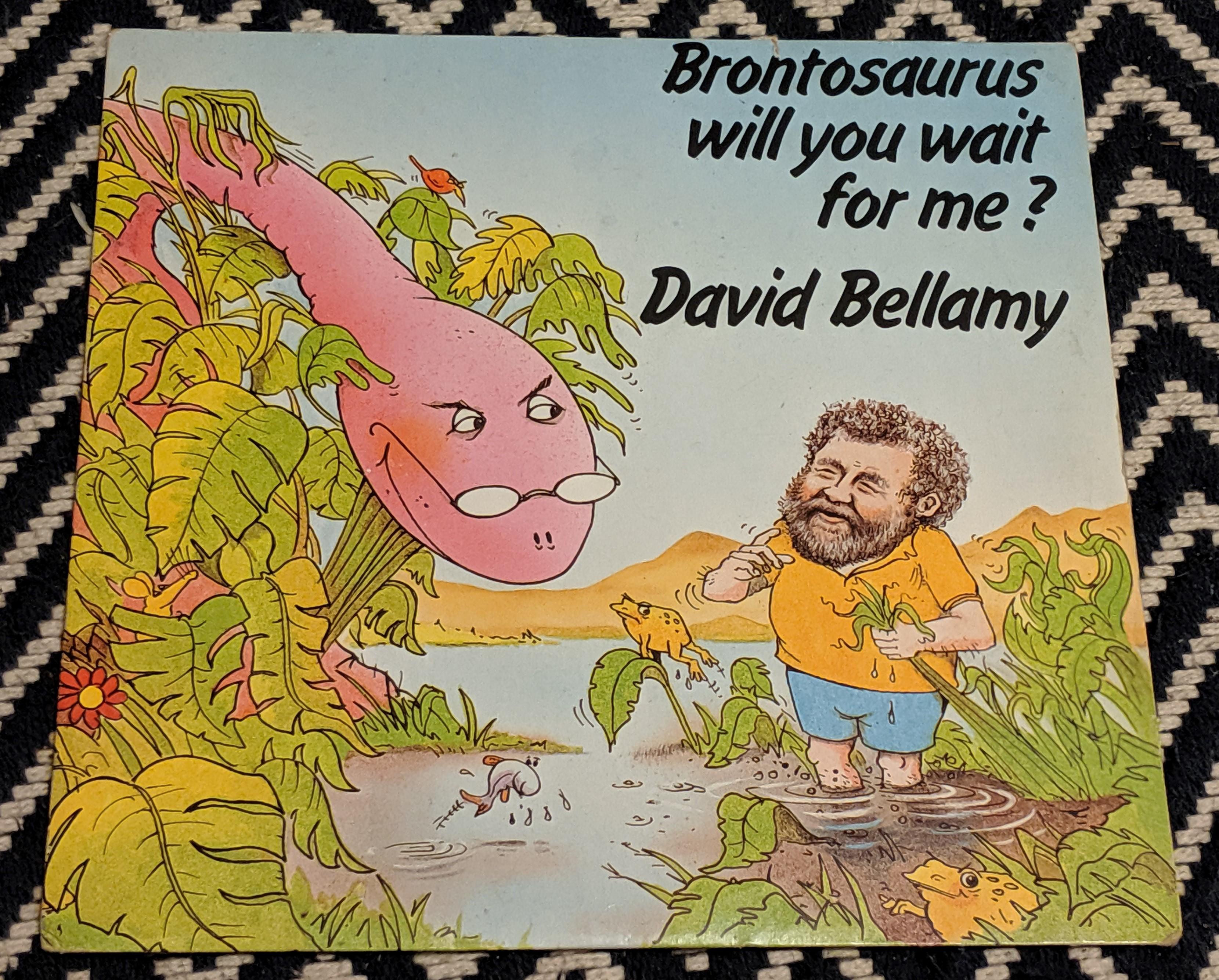 David Bellamy Song