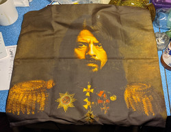 Dave Grohl Cushion