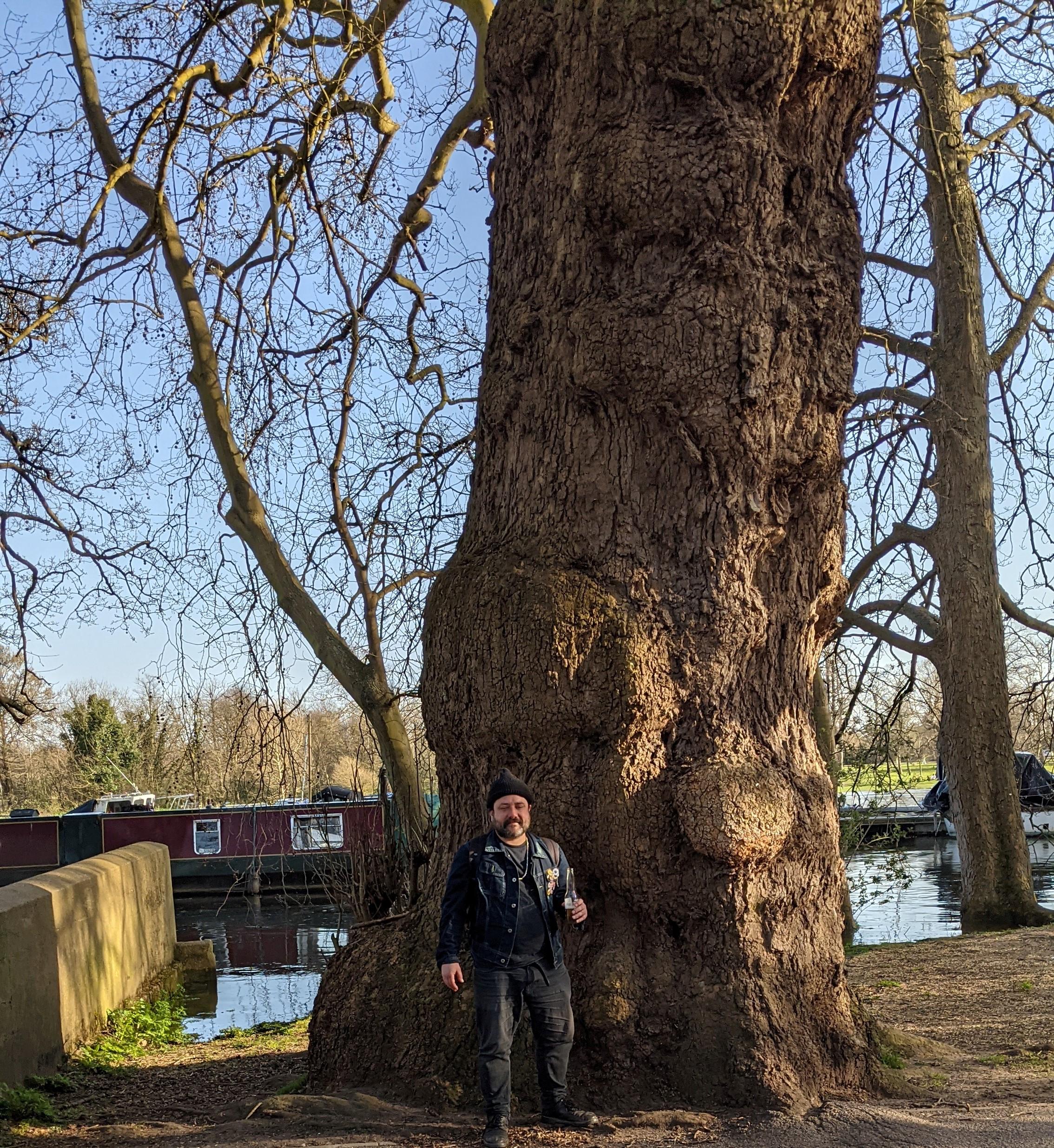 Small Eli, Big Tree