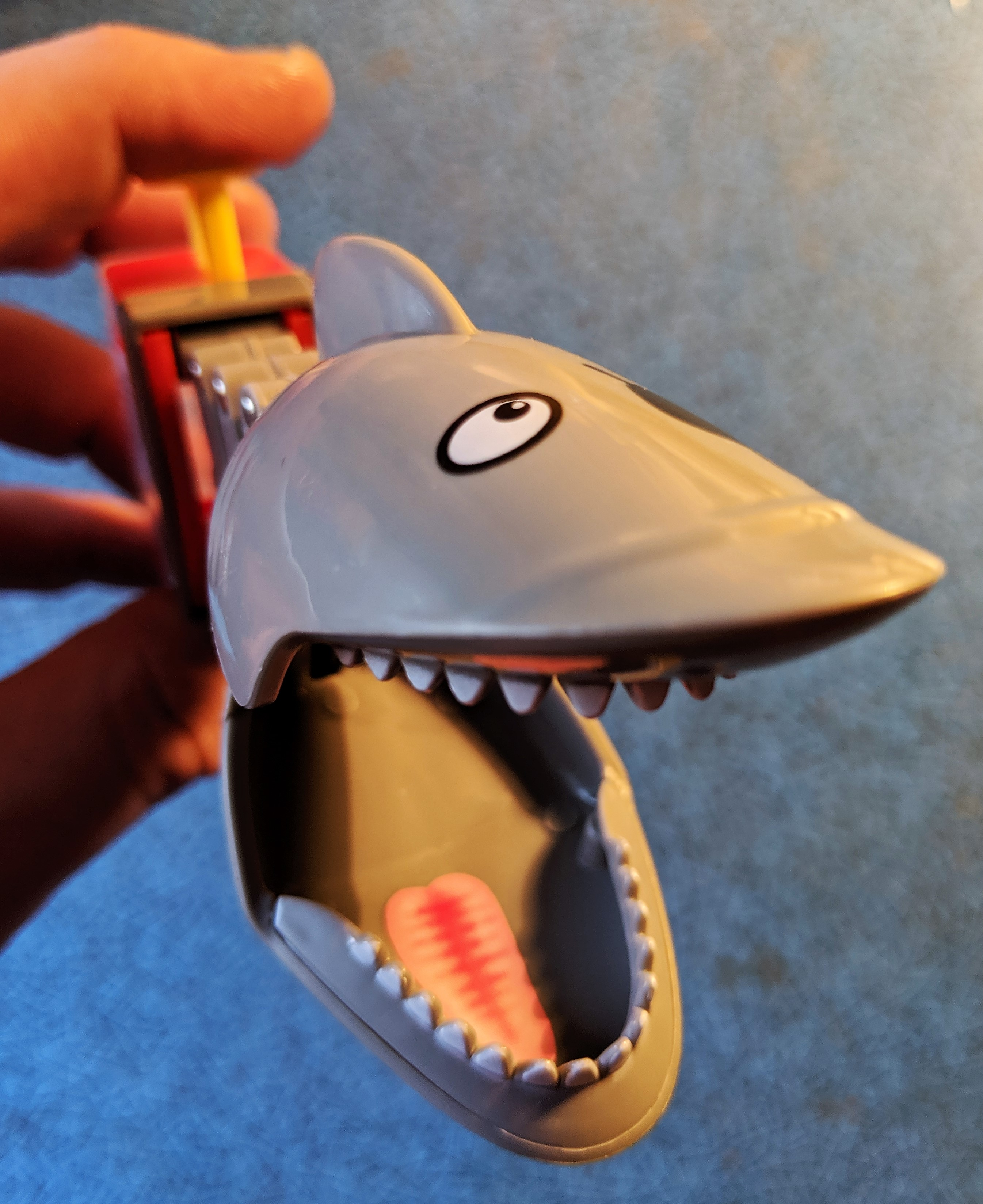 Shark Bite Other Angle