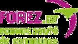 Logo CCFE par transparence.png