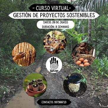 Curso virtual (3).png