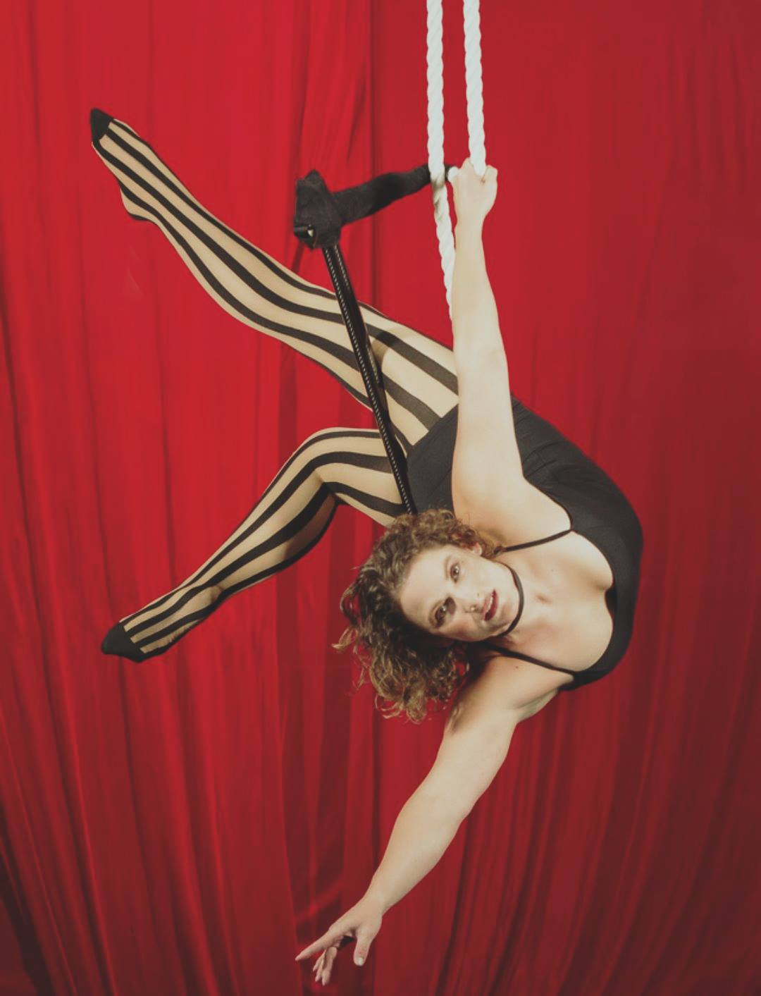 Aerial Trapeze