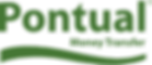 Pontual Logo.png