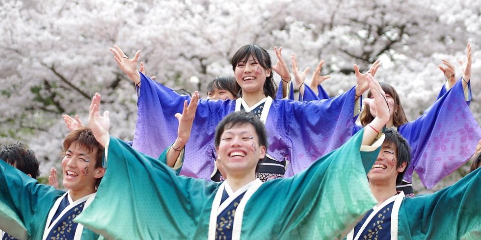 2021年度京都さくらよさこい