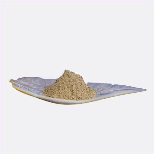 Cassia Ovata (Henné Neutre) en poudre