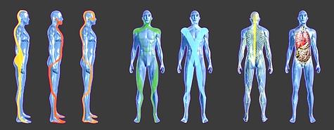 Ostéopathie et Posture