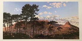 Dancing-pines (1).jpg
