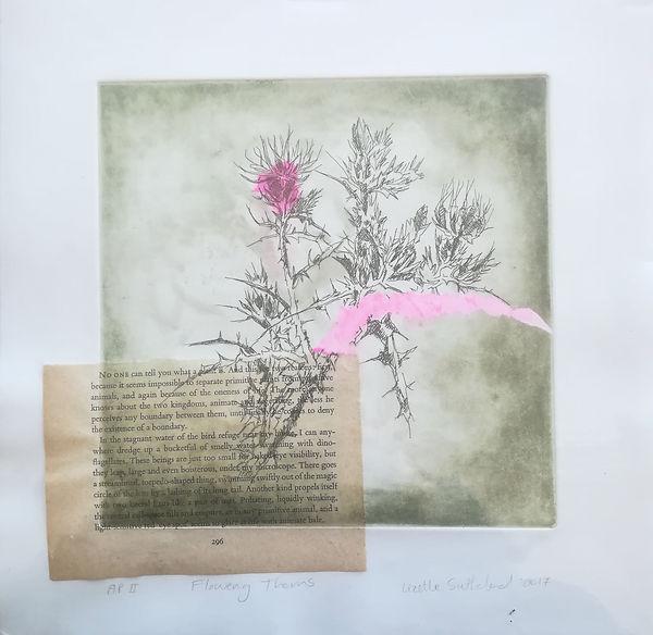 flowering thorns 28 by 28cm r650 spitbit