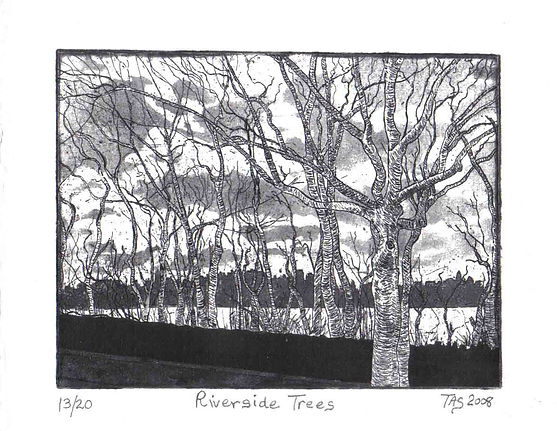 'Riverside Trees' by Margie Taswell-Yate