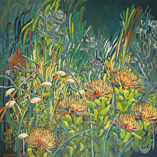Fynbos overflow; Pincushions Protea; 800