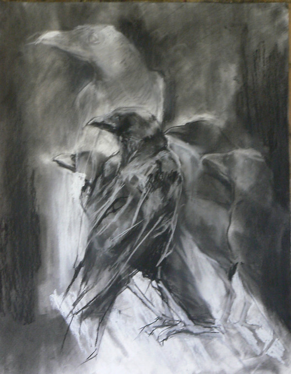 Frans Mulder_Crow Rhapsody No1_Pastel on