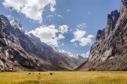 Rurec Valley