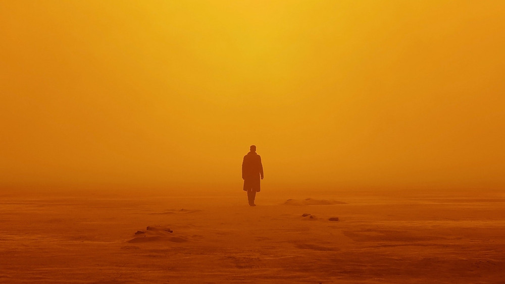 Sourced from: https://www.santiniphotography.com/blog/blade-runner-2049-cinematography/