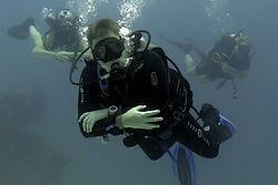 PADI OWD, PADI Open Water, PADI Open Water Diver Пхукет, Пхукет Open Water Diver, Курсы дайвинга на Пхукете, обучение дайвингу на Пхукете, дайвер открытой воды на Пхукете