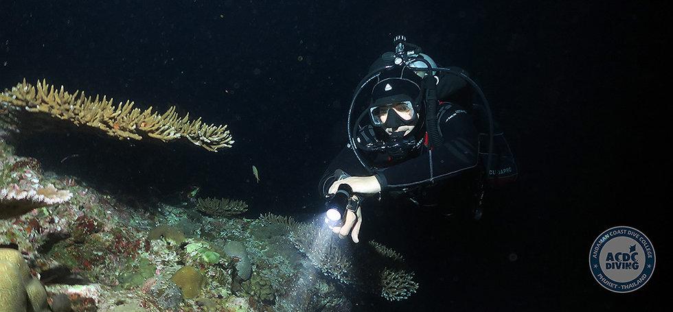 PADI Night diver, Night diver, Night diver Пхукет, курс Night Diver, Night Diving, PADI Night Пхукет, SSI Night Пхукет, Курс Night Пхукет, Пхукет Night Diver