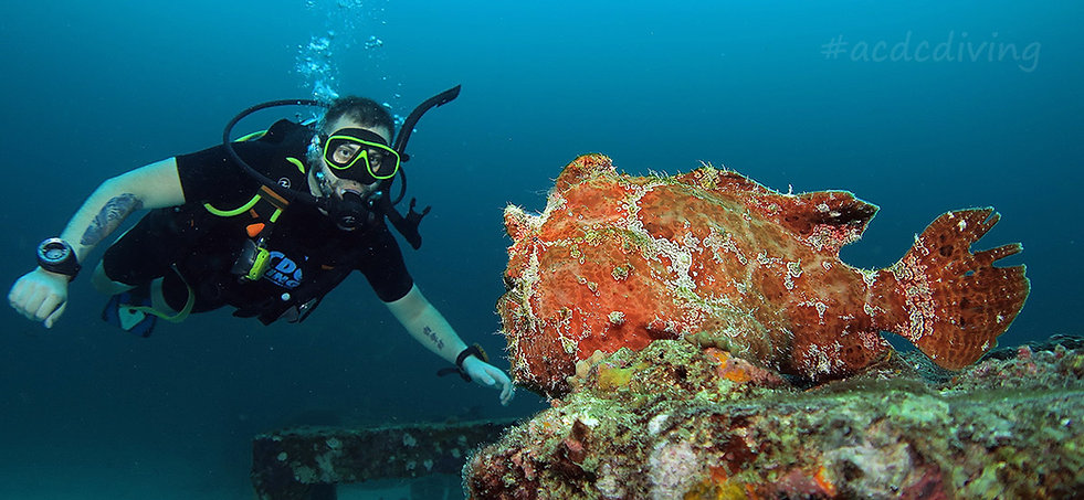 PADI Scuba Diver, Курс PADI Scuba Diver, Scuba Diver Пхукет, Пхукет PADI Scuba Diver, SSI Scuba Diver, SSI дайвер