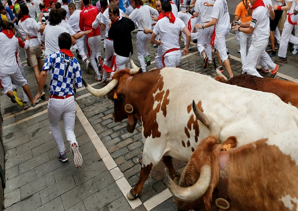 Figure 1 Running from the bulls in Pamplona