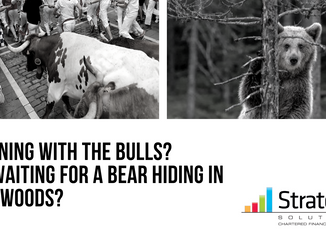 Running with the Bulls? Or waiting for a Bear hiding in the woods?