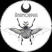 Logo d'Anamorphis dessiné à la main