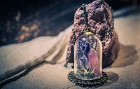 Terrarium par Les Chrysalides d'Ana avec fleurs séchées et pierre de quartz rose