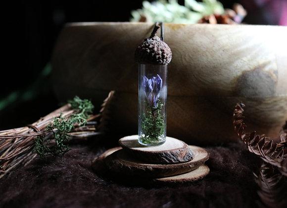 Fiole botanique - Fleur sauvage