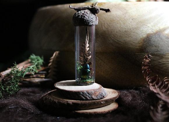 Fiole botanique - Douceur printanière