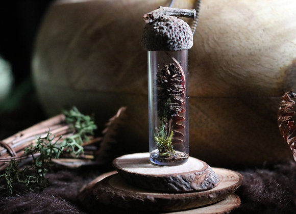 Fiole botanique -Graine d'Orne