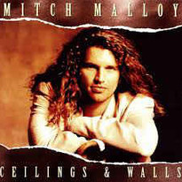 Mitch Malloy Ceilings and Walls
