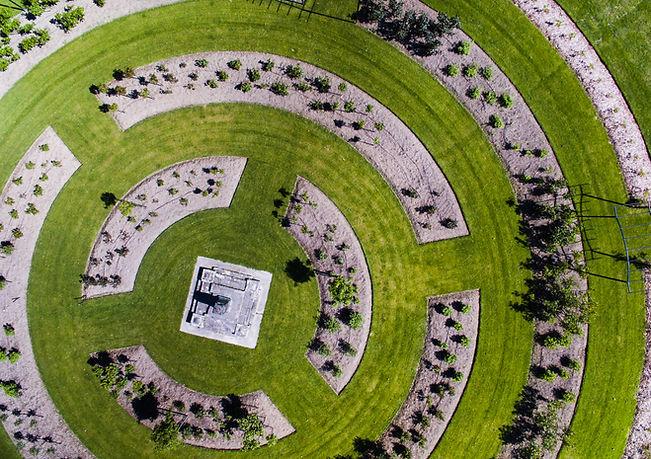 Campo in erba progettato