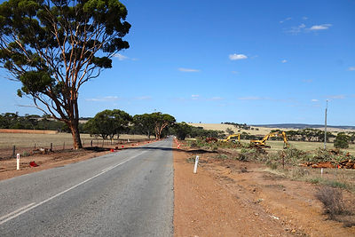 Trees on York-Quairading Road cut down after clearing
