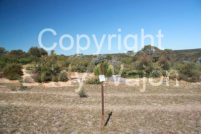Photomonitoring site of revegetation at GondwanaLink property, Chingarrup Sanctuary, WA