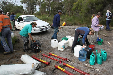 Potti Putkis and water ready for planting tubestock at Ken Hurst Park, Leeming, WA