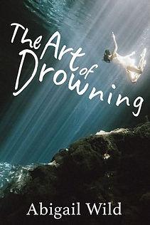 Art of Drowning novel cover