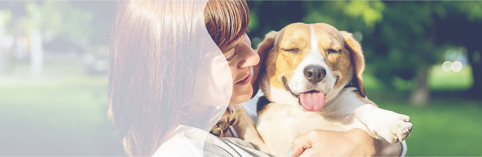 Hero Image_Dog Page_03.jpg