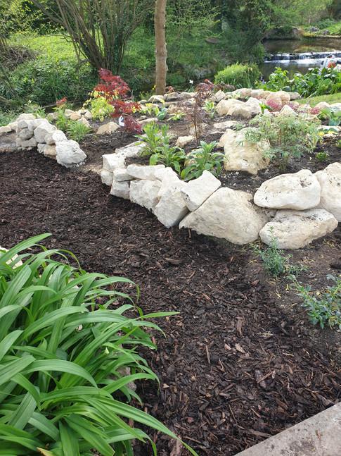 Alpine and Rock Gardening