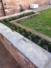 new flowerbed