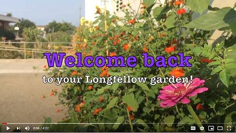 garden_update_2nd.JPG
