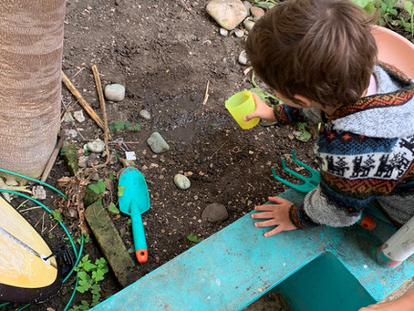 Gardening for Kids: 7 Reasons Planting Seeds Enriches Their Lives