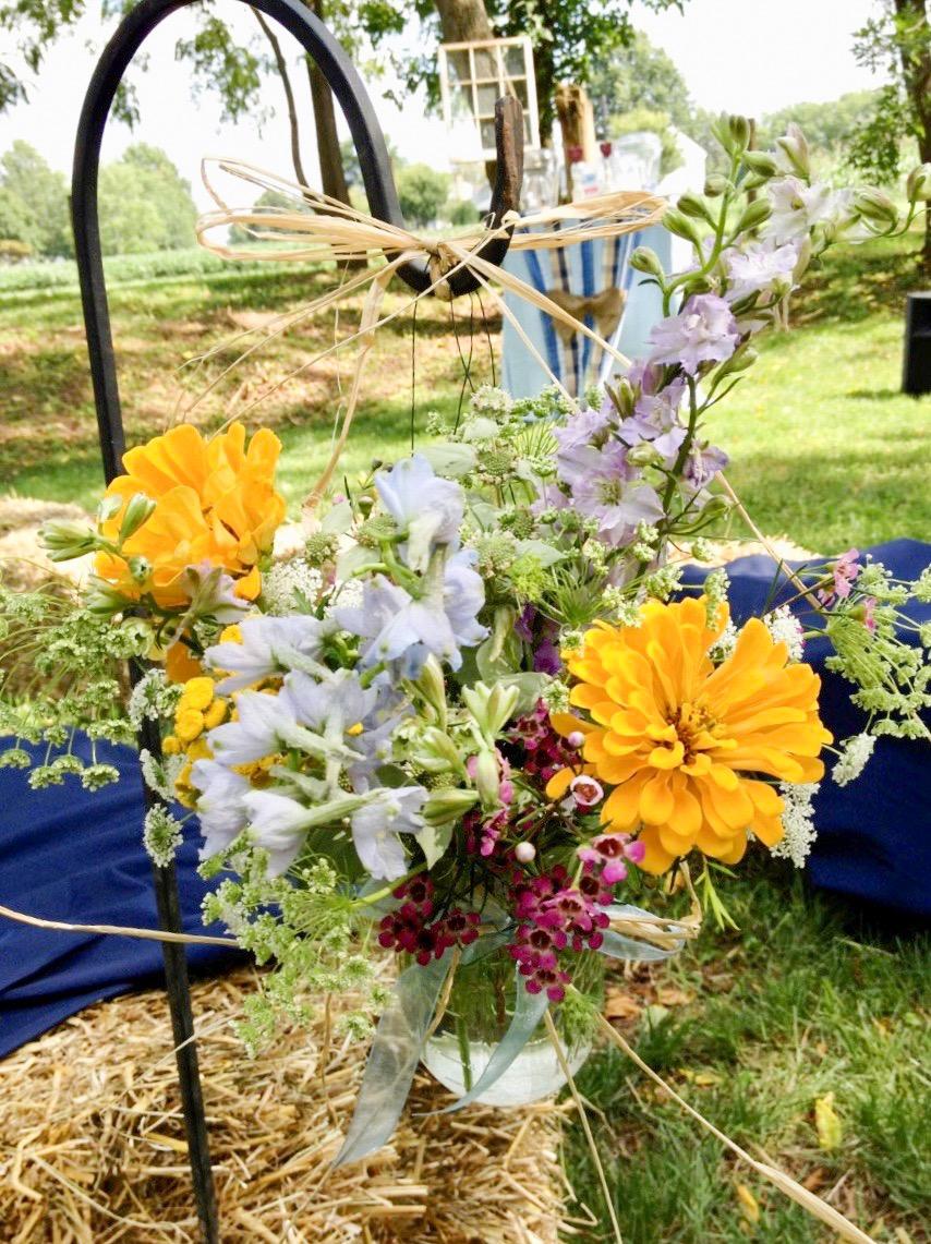 Wedding_-_farm_1
