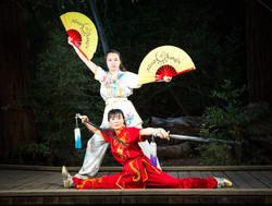 Adult Wushu Team