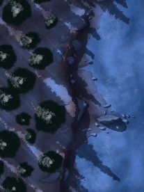 Moonlight_Maps_Coastal_Forest_Mist08_nig